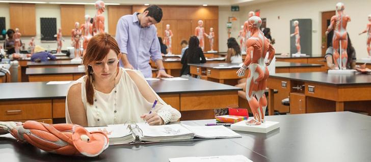 Hysiology Lab — Cluber